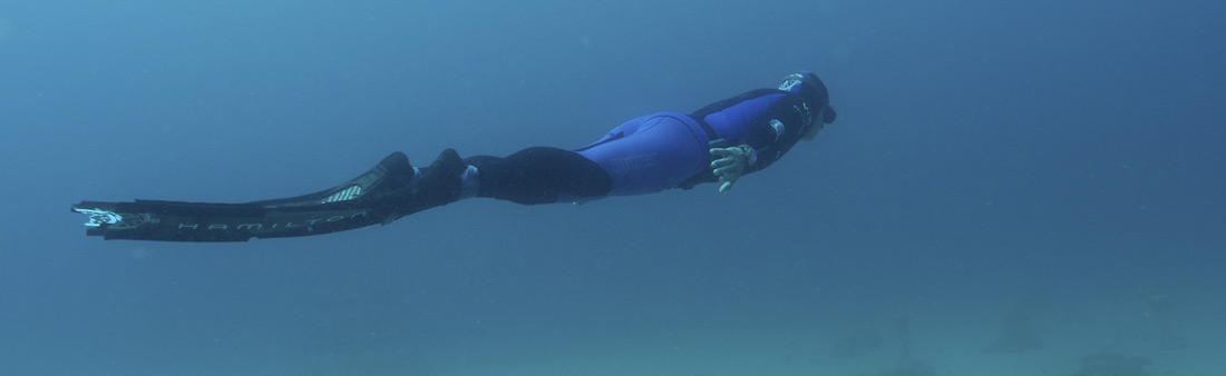 Monaco Free Diving
